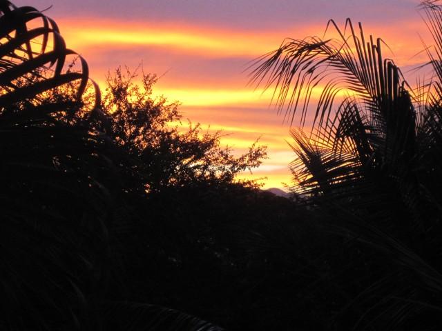 Winter Sunrise Mezcales Mexico